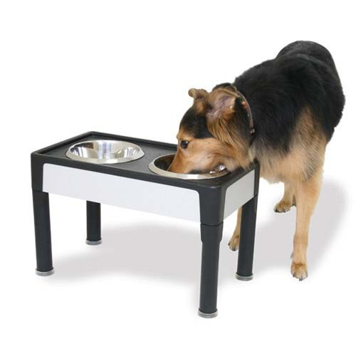 Our Pets Signature Series Dog Elevated Panel Feeder Black / Gray 23