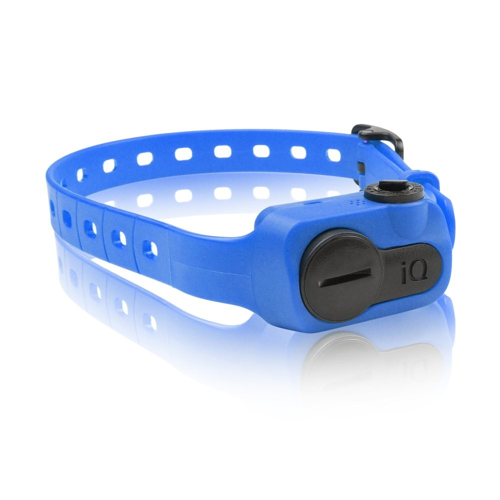 Dogtra iQ No Bark Collar Blue
