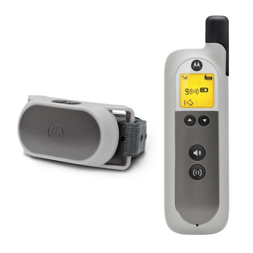 Motorola Dog Basic Remote Training System Gray